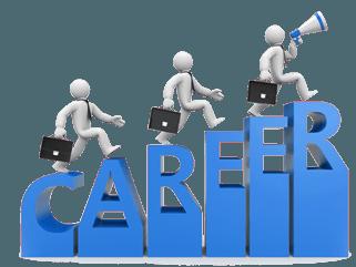 Career Report 1 Year