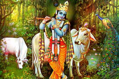 Ganesha celebrates Janmashtami in a unique way