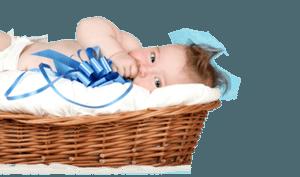 Progency Report